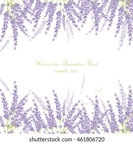 Lavender Card Border Vector. Gentle blossom floral bouquet. Vintage Label with lavender beautiful fragrance