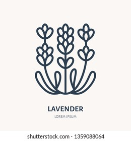 Lavender flower flat line icon. Medicinal plant vector illustration. Thin sign for herbal medicine, essential oil logo.
