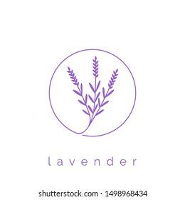 lavender flower logo design template