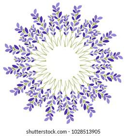 Lavender flower star on white background