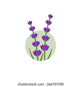 Lavender flowers in the round shape logo