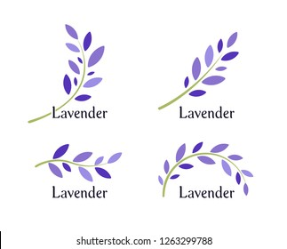 Lavender icons set. Violet leaves and green branch of lavender. Natural herb logo template. Vector illustration.