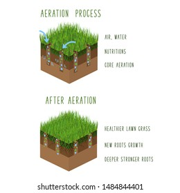 Lawn aeration process steps, isometric - before and after, lawn grass care service, gardening and landscaping, isolated illustration for article, infographics or instruction on white background, vecto