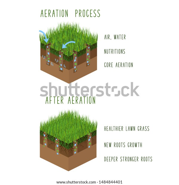 Lawn Aeration Process Steps Isometric Before Stock Vector Royalty