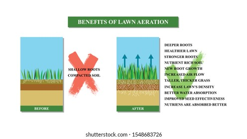 Lawn aeration vector illustration. Before and after aeration: gardening, lawn grass care service, landscape design. Benefits,advangages of aeration.Vector illustration is isolated on white background.
