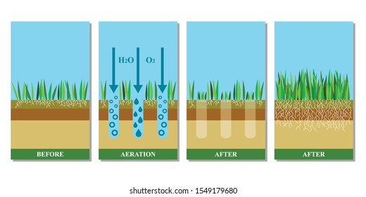Lawn aeration vector illustration. Before and after aeration: gardening, lawn grass care service,landscape design. Benefits, advangages of aeration.Vector illustration is isolated on white background.