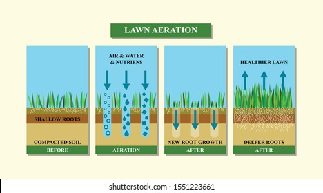 Lawn aeration vector illustration. Before and after aeration: gardening, lawn grass care service, landscape design.Benefits, advangages of aeration.Vector illustration is isolated on white background.
