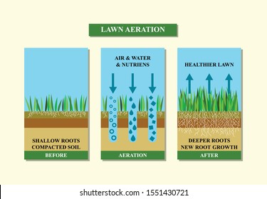 Lawn aeration vector illustration. Before and after aeration: gardening, lawn grass care service,landscape design.Benefits, advangages of aeration. Vector illustration is isolated on white background.