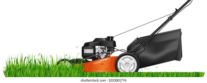 mowed grass lawn mower cutting green grass vector illustration