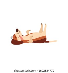 Lazy dog or cute beagle puppy sleeping and laying on his back comic cartoon character flat vector illustration isolated on white background. Funny pet and domestic animal.
