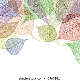 Leaf abstract skeleton background. Vector, EPS10.