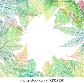 Leaf abstract skeleton background. Vector colorful autumn leaves textured illustration.