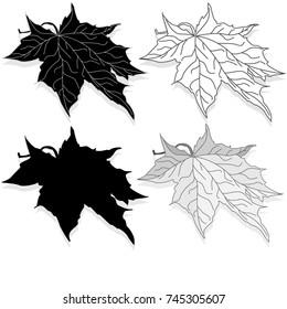 leaf autumn colorful illustration set isolated