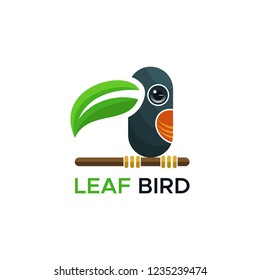 leaf bird logo vector