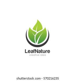 Leaf Creative Concept Logo Design Template