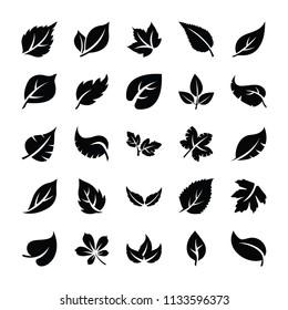 Leaf Glyph Icons