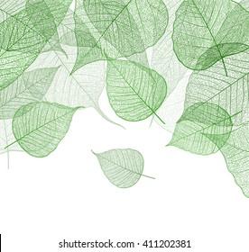 Leaf green background. Vector.