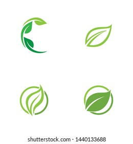 Leaf green Logo and symbol vector Template