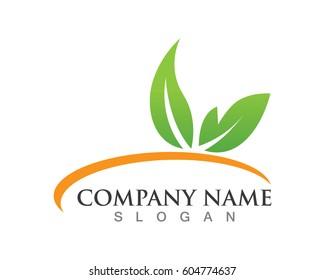 Leaf green nature logo concept