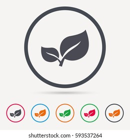 Leaf icon. Fresh organic product symbol. Round circle buttons. Colored flat web icons. Vector
