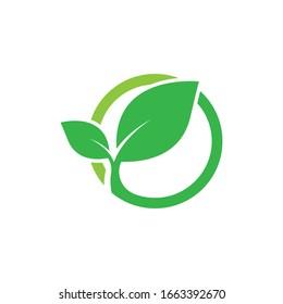 Leaf icon logo vector illustration