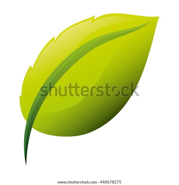 leaf icon. Nature plant design. vector graphic