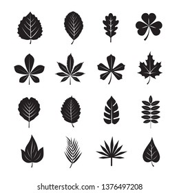 Leaf icon set on White Background