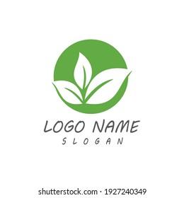Leaf icon Vector Illustration design Logo template