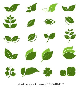 leaf icon with white background 2
