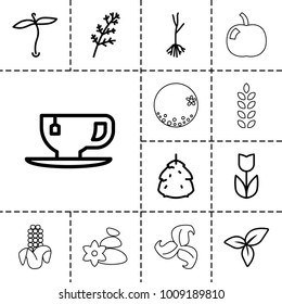 Leaf icons. set of 13 editable outline leaf icons such as plant, berry, deel, flower, tea cup, sprout, leaf, orange, apple, corn