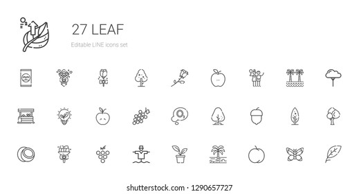 leaf icons set. Collection of leaf with peach, palm tree, plant, scarecrow, grape, bouquet, coconut, hazelnut, tree, ozone, apple, renewable energy. Editable and scalable leaf icons.