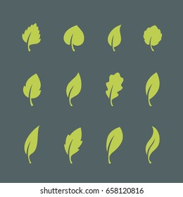 Leaf icons set isolated on dark background. Green leaves of various shapes for natural, eco or bio product logo or label design.