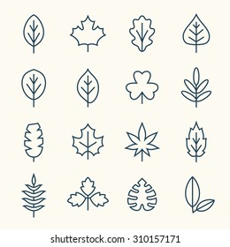 Leaf line icons