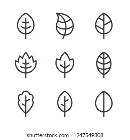 Leaf line icons, vector leaves logo design