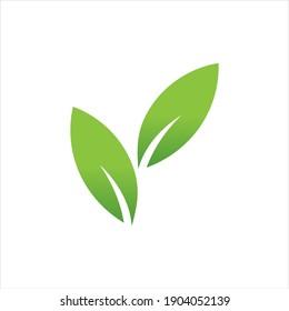 Leaf logo design, vector natural concept inspiration, leaf icon
