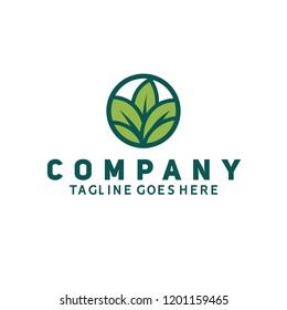 leaf logo icon vector