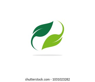 Leaf Logo Template
