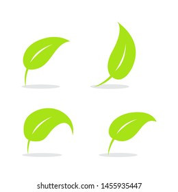 Leaf logo vector design template - Vector