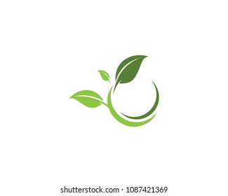 Leaf Logo vector and symbols