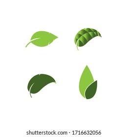 leaf logo vector template design illustration
