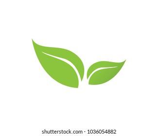 Leaf logos symbols template