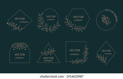 Leaf monogram. Hand drawn ornamental leaf frame, modern floral art emblem. Vector organic spa concept logo