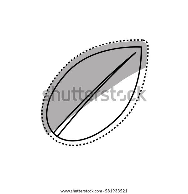 Leaf natural ecology icon vector illustration graphic design