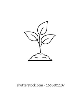 Leaf nature line icon on white. Vector