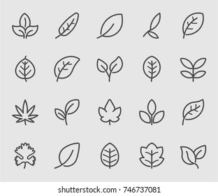 Leaf outline icons