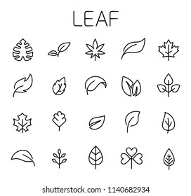 Leaf related vector icon set. Well-crafted sign in thin line style with editable stroke. Vector symbols isolated on a white background. Simple pictograms.