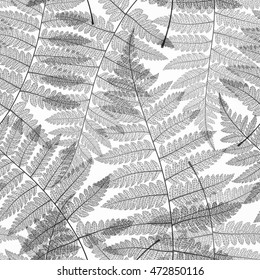 Leaf seamless pattern. Abstract skeleton background. Fern black and white autumn leaves textured. Textile design. Vector illustration.
