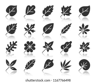Leaf silhouette icons set. Monochrome sign kit of season foliage. Autumn Garden pictogram collection tropical herb, vegan food, environment. Simple vector black symbol. Leaf shape icon with reflection
