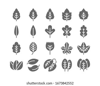 Leaf Solid Glyph Icon Set Autumn fall and Spring Concept Minimal Style Illustration Vector EPS 10.