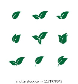 leaf spring icon vector